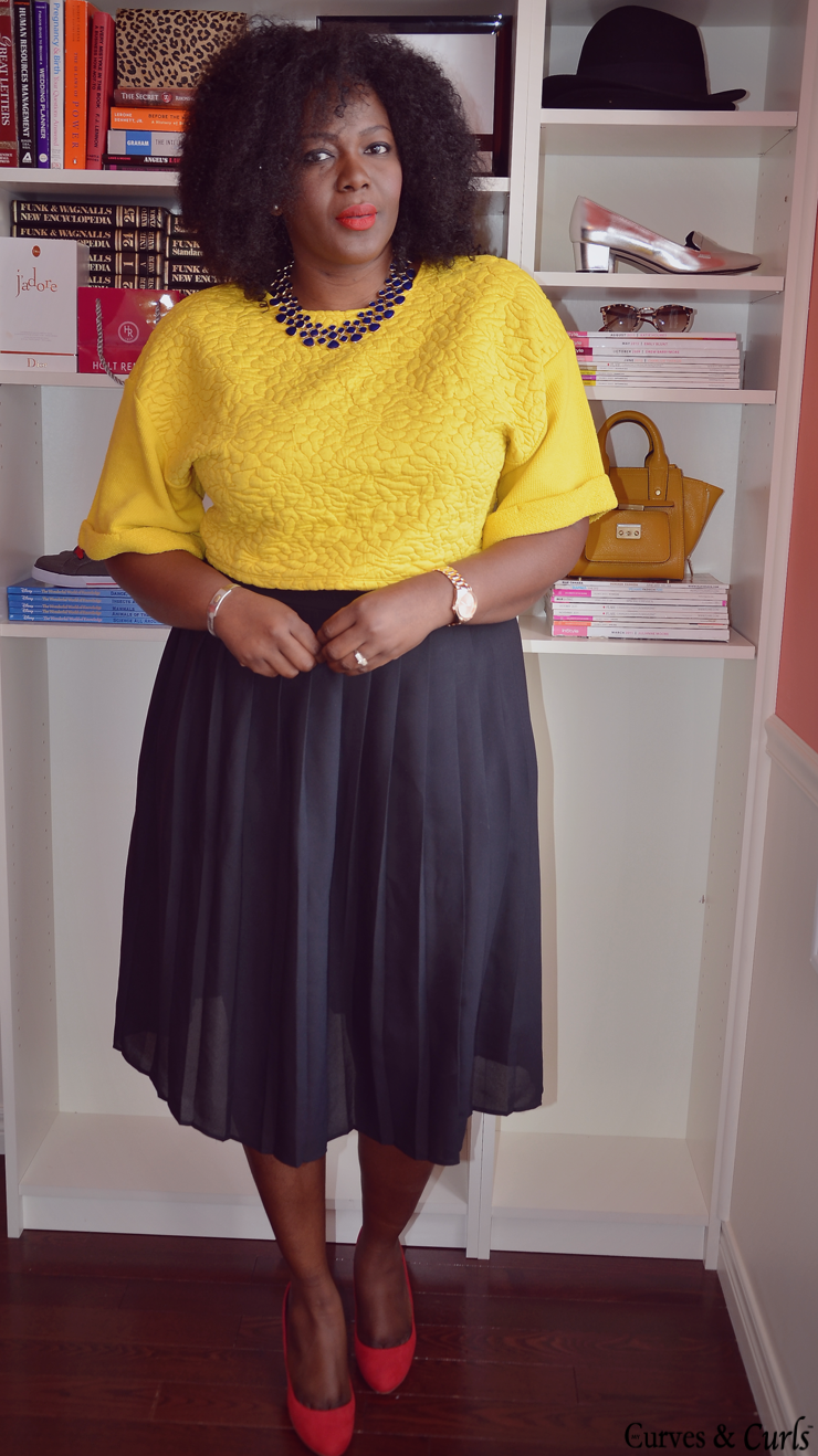 Plus Size Skirts with Crop Tops