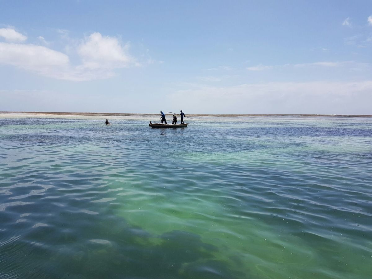 A Local Tourist Exploring Malindi : The Kenyan Coast