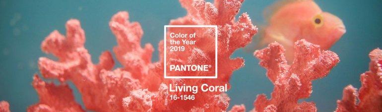 Living Coral colour