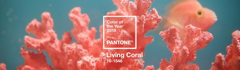 Living Coral colour
